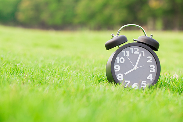 Clock timer on lawn grass mowing time