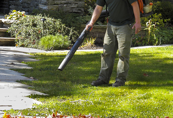 Fall Lawn Care & Cleanup Services | Lawn Pros – Racine