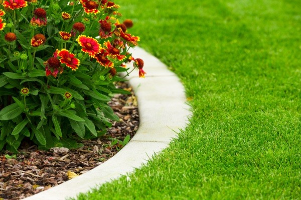 Landscape Bed Maintenance Burlington, WI