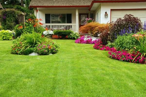 Lawn Care Renovation Paddock Lake, Salem & Twin Lakes, WI