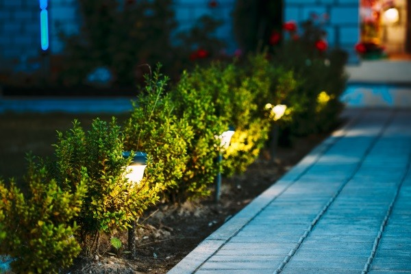 Landscape Lighting Installation Paddock Lake / Twin Lakes Area