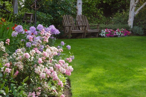 Lawn Renovation Services SE Wisconsin