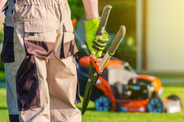 Lawn Care Maintenance in SE Wisconsin