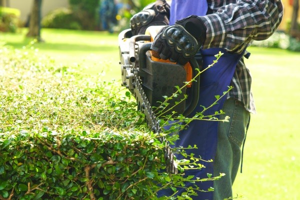 Lawn Care Services in SE Wisconsin