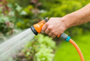 Hand Watering Lawn with Hose - Lawn Pros of Racine & Kenosha