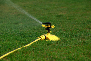 Lawn Sprinkler on Green Grass - Lawn Pros of Racine & Kenosha