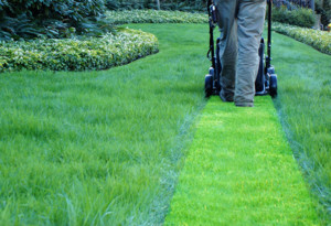 Mowing Wisconsin Grass - Lawn Pros of Racine & Kenosha